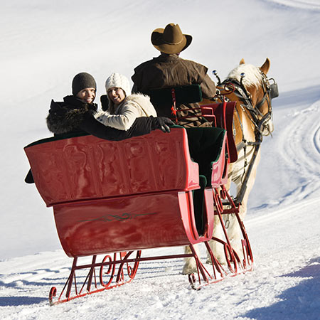 Horse-sleigh-ride in Ahrntal